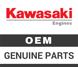 Kawasaki Engine